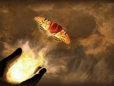 Flight-of-the-Soul-Rumi